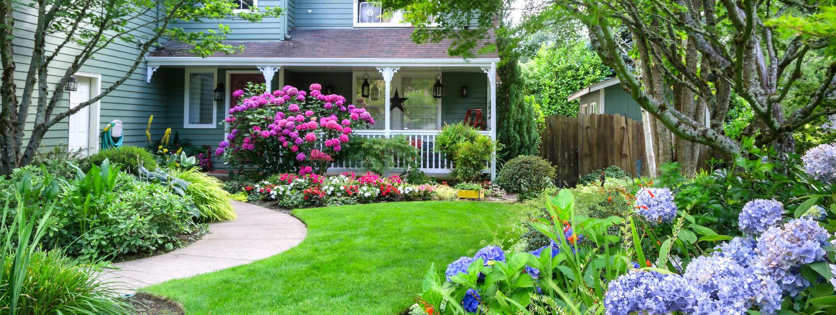 Gainesville Landscape Amp Lawn Care Evergreen Lawn Care