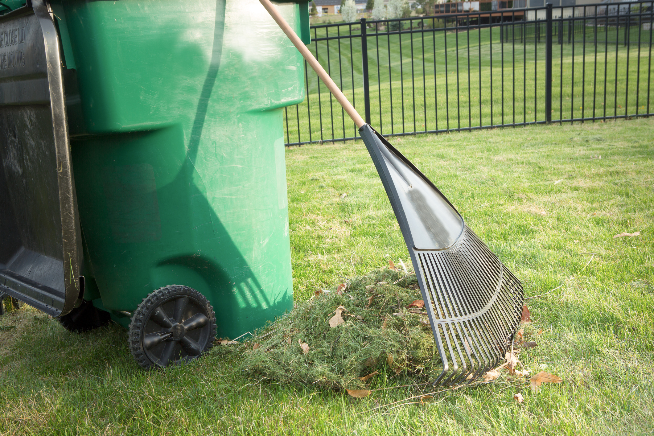 Property Cleanup Service in Florida