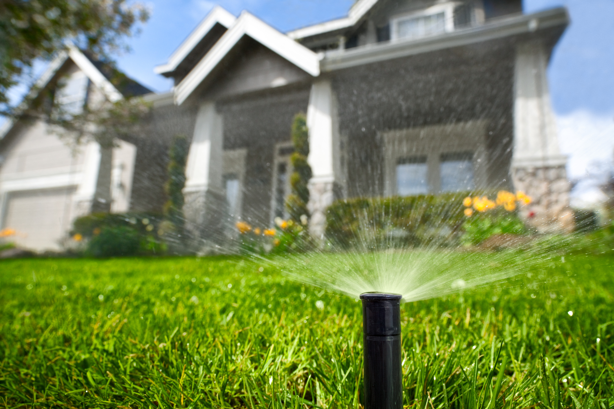 Residential Irrigation Installation & Repairs in Florida