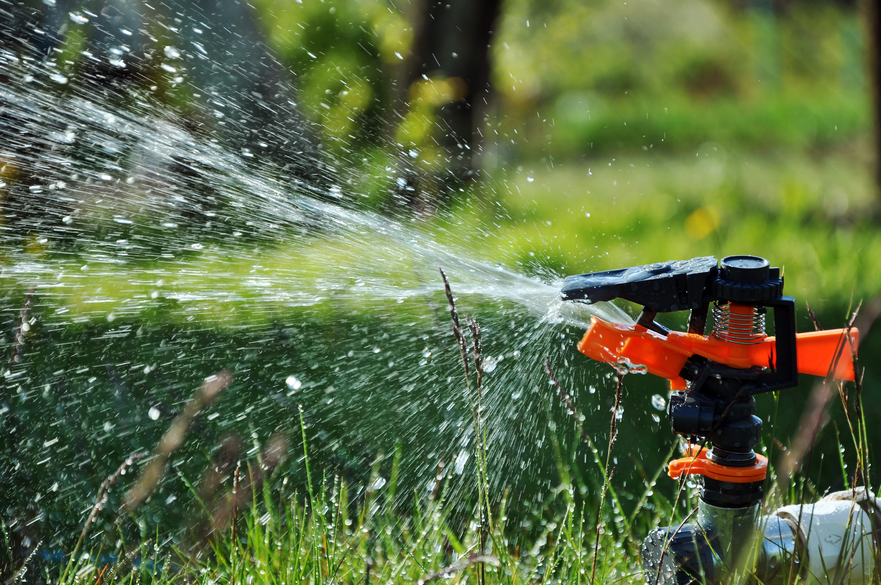 Commercial Landscape Irrigation Service in Florida