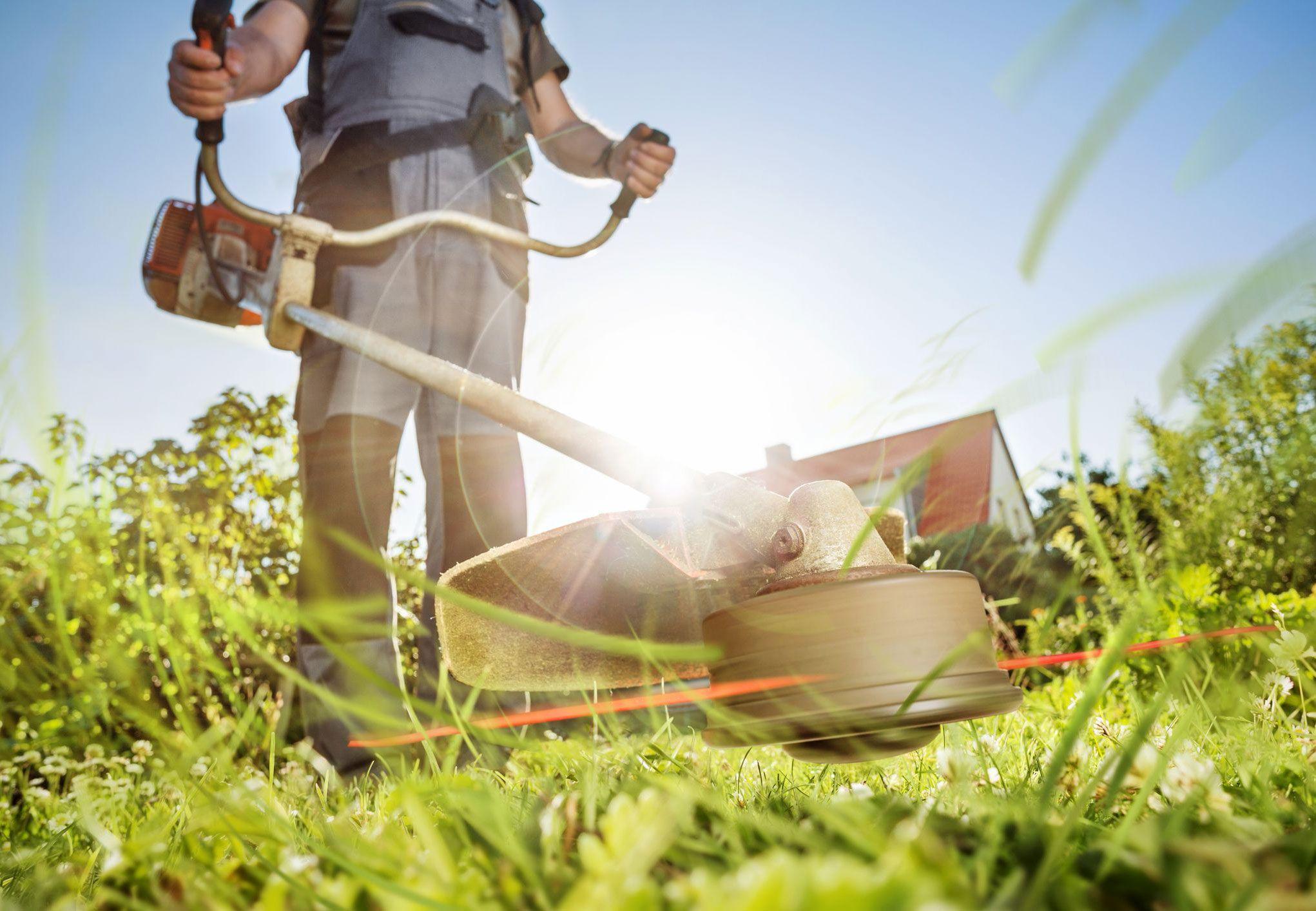 Florida Spring Landscaping Services