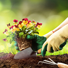 Prepping Your Gardens and Landscaping for Spring