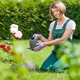 Beat The Heat: Tips to Stay Cool While Landscaping & Gardening