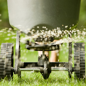 How To Plan Your Winter Lawn Care