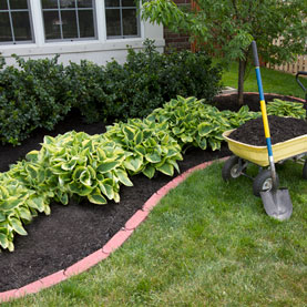How Landscaping Can Save You Money