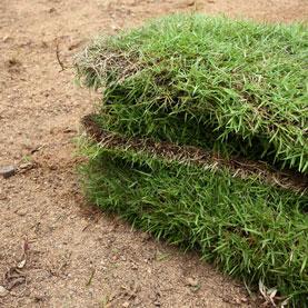 Image for Preventing & Managing Soil Erosion