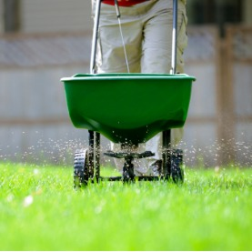 Image for Prepping Your Lawn For Winter