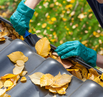 Gainesville Gutter Cleaning