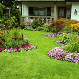 10 Things You Don't Know About Lawn Care