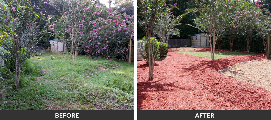 Spring Amp Fall Yard Cleanup Services In Gainesville Fl