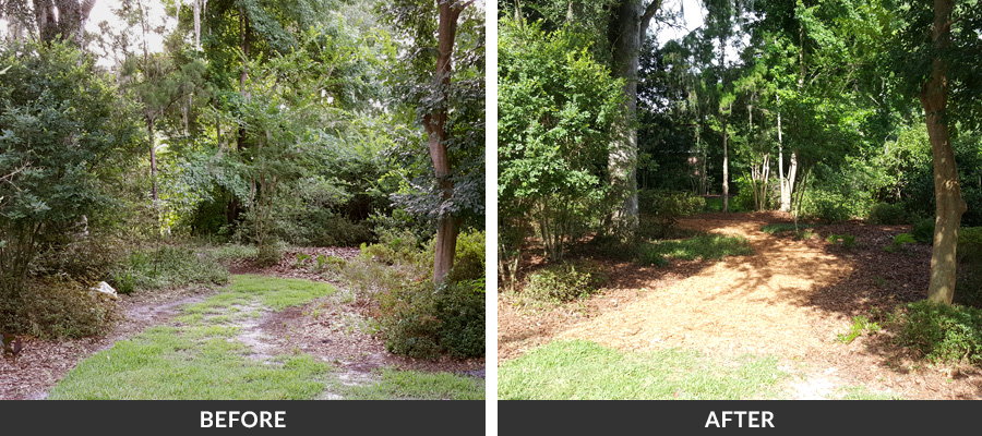 Before Amp After Lawn Care Gallery In Gainesville Fl